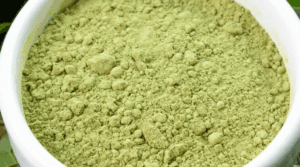 An image showing a bowl of fresh Kratom powder for ultimate health solutions