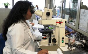 An image of a lab technician in third part testing for Best CBD Oil Products