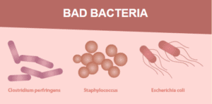 An image of Bad bacteria