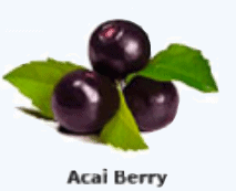An image of acia berry
