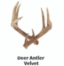 An image of deer antler velvet