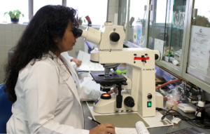 An image of a lab technician doing research on diabetes